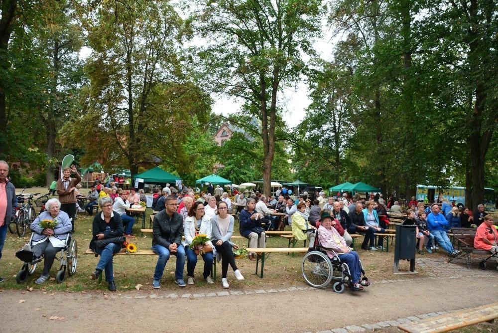 sonnenblumenfest3